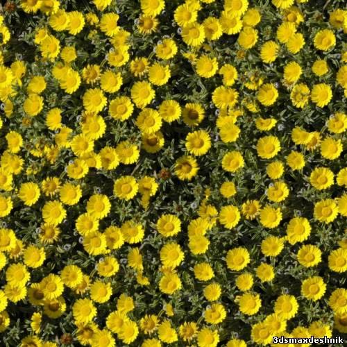 ... текстур цветов, клумб и цветников: 3dsmaxdeshnik.ucoz.ru/load/3ds_max/tekstury_k_3ds_max/sborka...